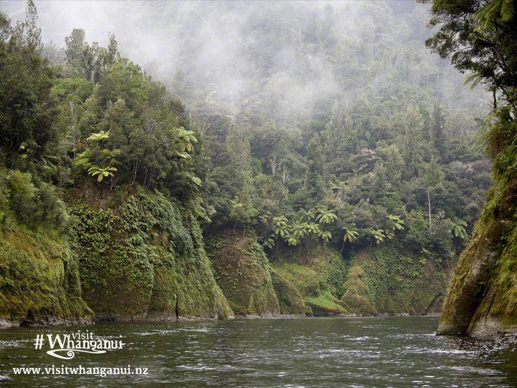 #whanganui #newzealand #wanganui #northisland #travelnz #visitnewzealand #newzealandbeauty #whanganuiriver #nzmustdo #kiwi_photos #kiwipics #travelgram #lonelyplanet #nz #mustdonz #heritage #ruapehu