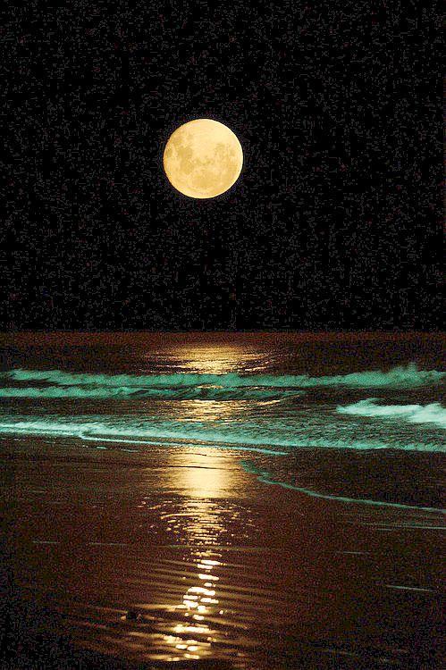 ¿Alguna vez estuviste frente al mar en luna llena? El Pacífico Mexicano regala panorámicas asombrosas.