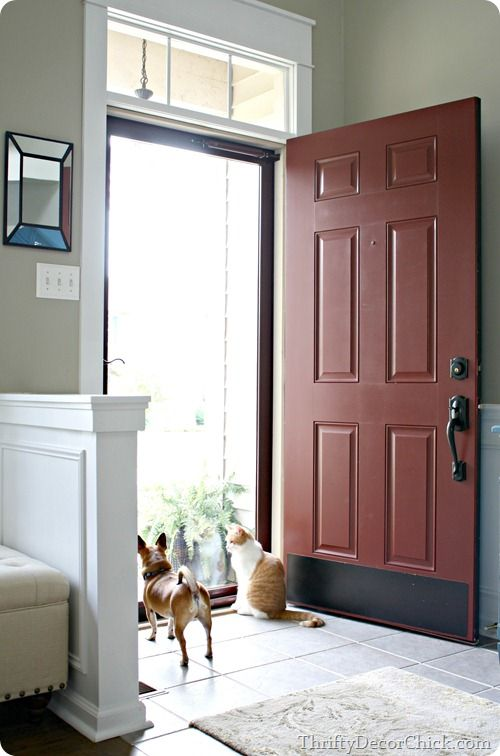 Adding a glass door to bring in more natural light!