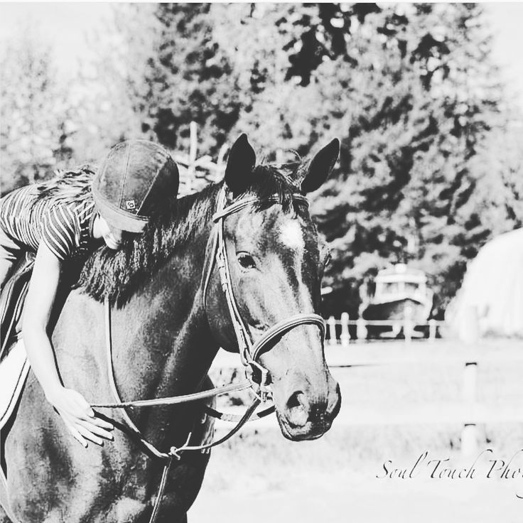 my new horse lovin. she is a 9 year old off the track thoroughbred. I LOVE HER!!