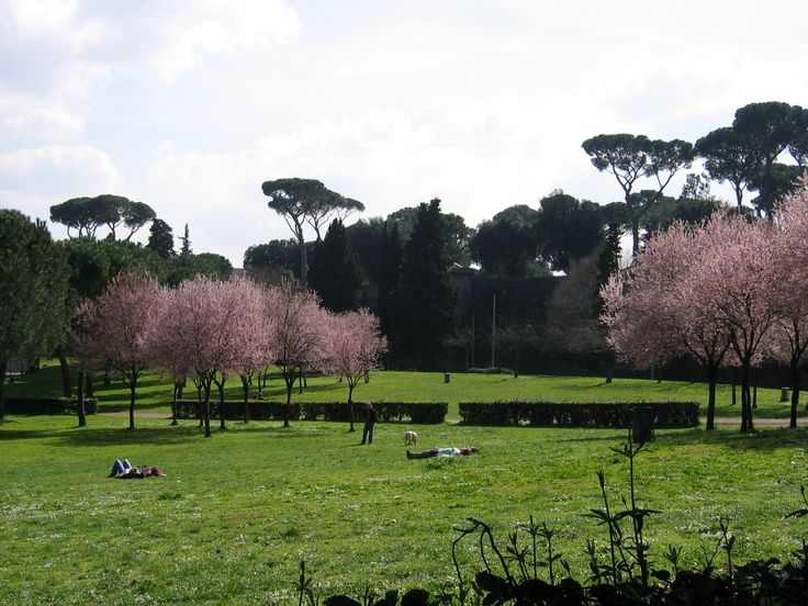 Photo I took while walking near the Borghese Museum. This is where Ivo and his mother walked during the park scene in ONE MAN'S PRINCESS.
