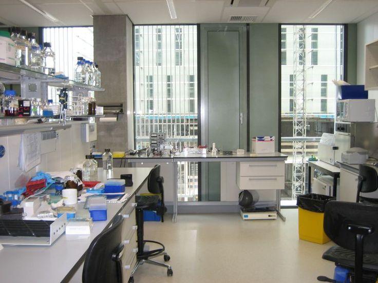 Molecular_Cell_Biology_Laboratory_-_LUMC.jpg (JPEG Image, 800×600 pixels)