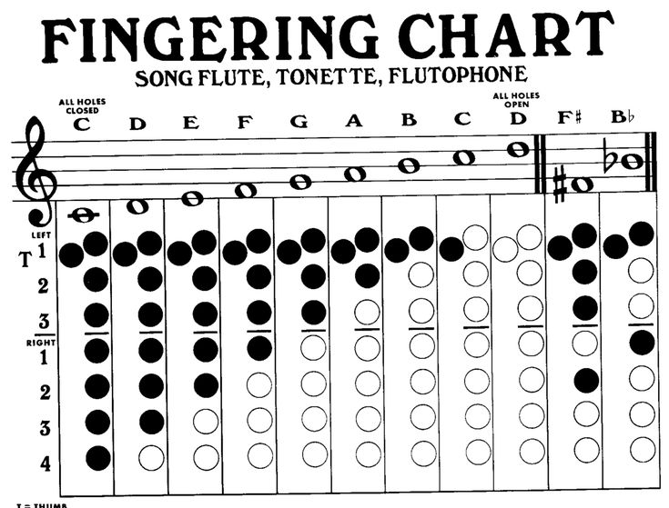 37 best Flute images on Pinterest Music instruments, Musical - clarinet fingering chart