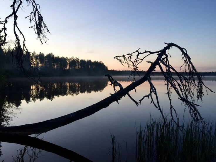 Aittojärvi, Hossa, Suomussalmi, Finland. Photo: Mauri Kuorilehto (7.6.2016).