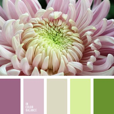 Thin, delicate color palette. No flashy colors, but smooth and unhurried. The pastel shades of lilac, lime green, gray-beige in harmony with the rich tones. Brightly colored young grass and exquisite color Marsala add natural charm. Such compositions find use in home and office spaces.