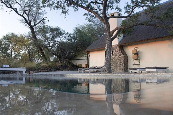 Mbizi Bush Lodge, Phalaborwa, South Africa <3