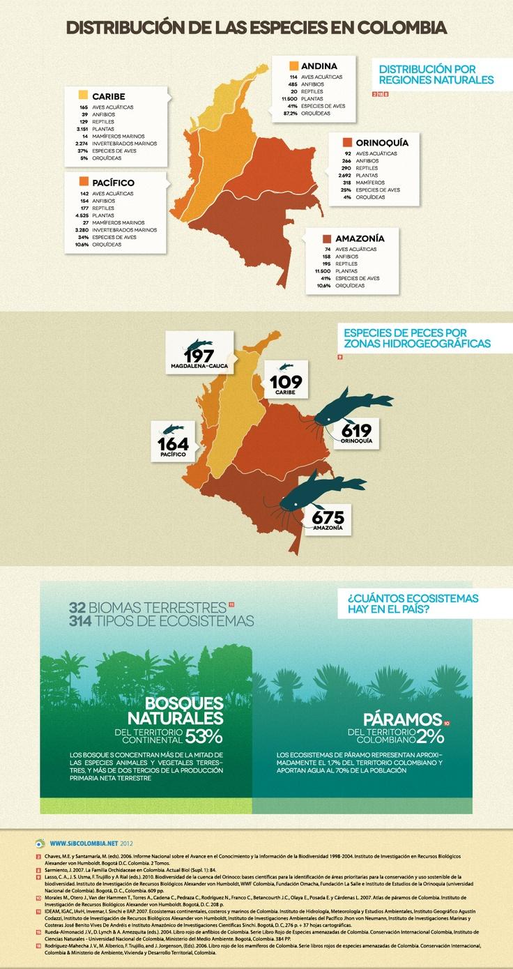 Distribución de las especies en Colombia - Cifras de Biodiversidad en Colombia - @sibcolombia