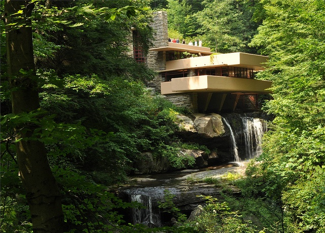 Frank Lloyd Wright's Falling Water, Mill Run, PA  This one is near me - it's fabulous!