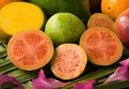 More than a colorful tasty fruit, guavas are bursting with vitamins and have…
