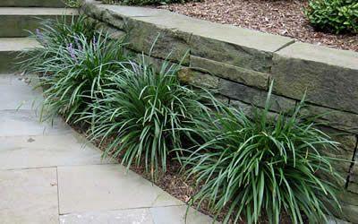 82 best Kathy Garden images on Pinterest | Gardening, Landscaping ...