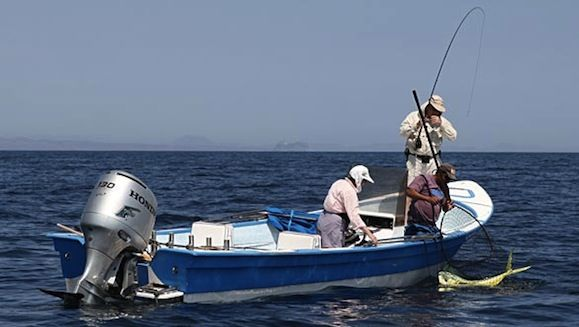 17 best images about san felipe vacations on pinterest for Best fishing vacations