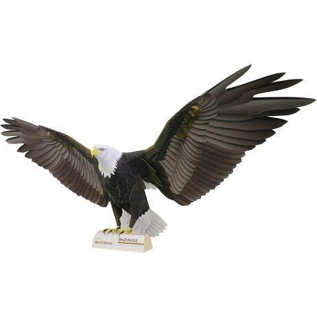 Bald Eagle,Animals,Paper Craft,North America / South America,United States,Eagle,Birds,Animals,Paper Craft,Hawk,bird,Bird of prey