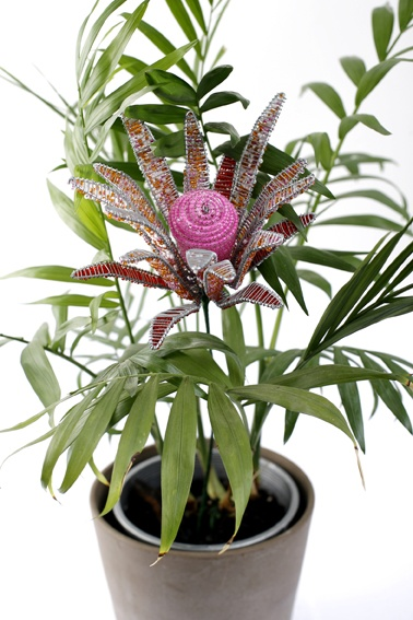 Pink protea, $20, with free delivery in Australia from www.wiredandwonderful.com.au