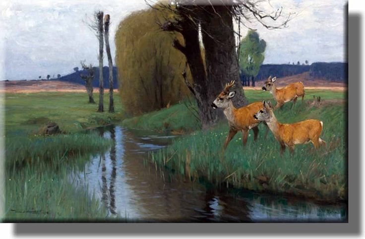 Deer Crossing River Hunting Picture on Acrylic , Wall Art Decor, Ready to Hang!