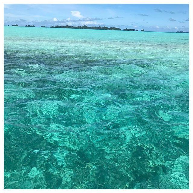 【kusaeriii】さんのInstagramをピンしています。 《青空が見たい!!!💙💚 . . 今日は天気がイマイチですねー! 1日楽しみましょう!!!🙋💕 そんな私は #働き蜂 🐝… . . . #過去写真 #加工なし  でこのカラー最高過ぎでしたっ! #ロックアイランド #青空#最高 #南国#海#ビーチ#ヒトデ#加工なし #パラオ#ロングアイランド #バケーション#弾丸トラベル #思い立ったら即行動 #旅#旅写#旅好き女子 #旅好きな人と繋がりたい #海好きな人と繋がりたい #誰かと見たい空 #過去空 . #palau#sea#bluesky #genic_mag#genic_travel》