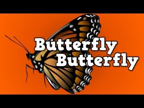 Butterfly, Butterfly! (a song for kids about the butterfly life cycle) - YouTube
