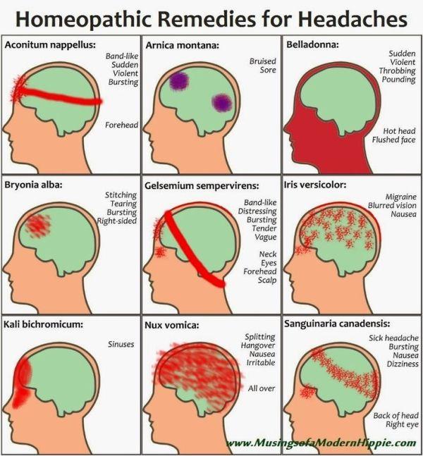Food increase brain memory photo 5