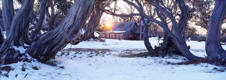 Wallace's Hut - oldest cattleman's hut standing in Australia - photo by Tim Wrate