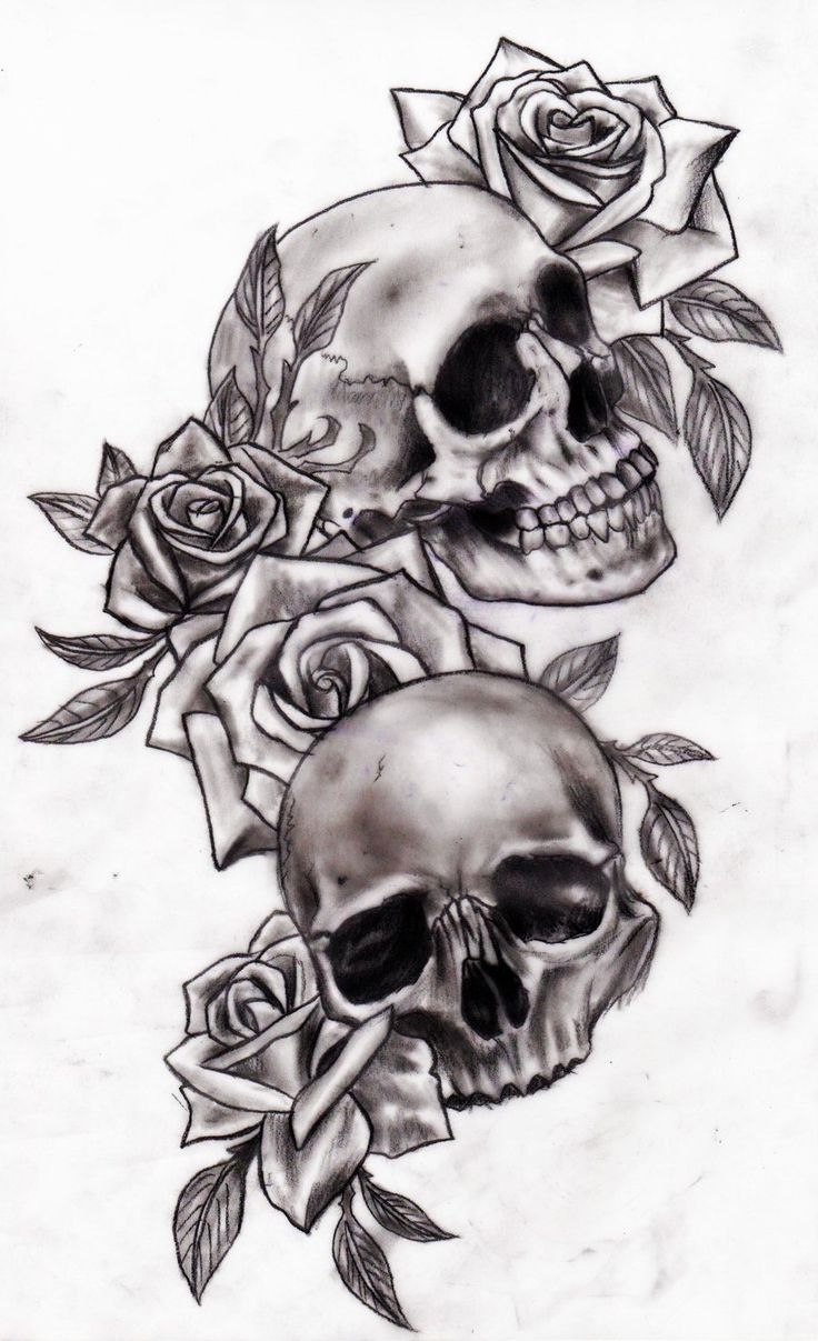Skull and roses by Slabzzz.deviantart.com on @deviantART