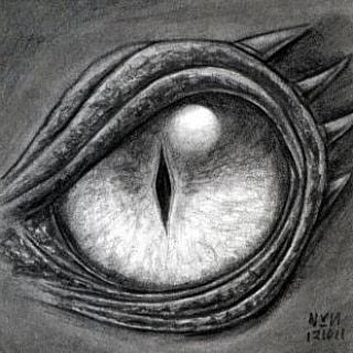 Scary Isnt It Dragons Pinterest Drawings Dragon Eye And Dragon
