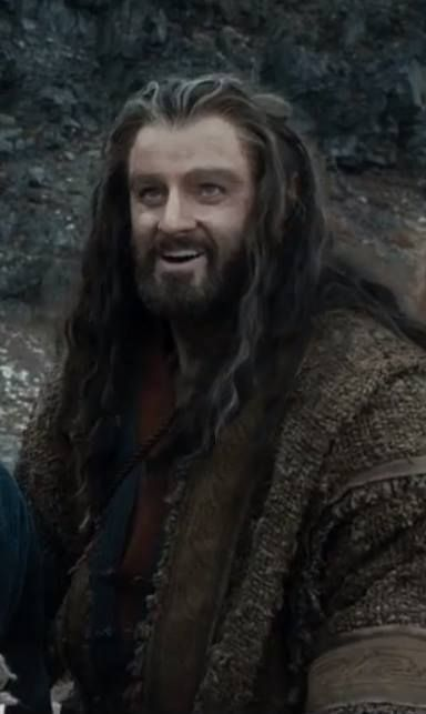 2150 best Thorin Oakenshield The Hobbit images on ...