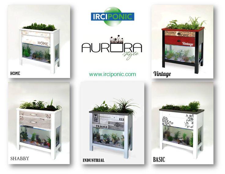 Aurora by IRCIPONIC! Gli Acquari Acquaponici per la tua casa, il tuo ristorante, il tuo negozio.........