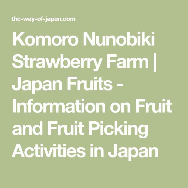 Komoro Nunobiki Strawberry Farm | Japan Fruits - Information on Fruit and Fruit Picking Activities in Japan