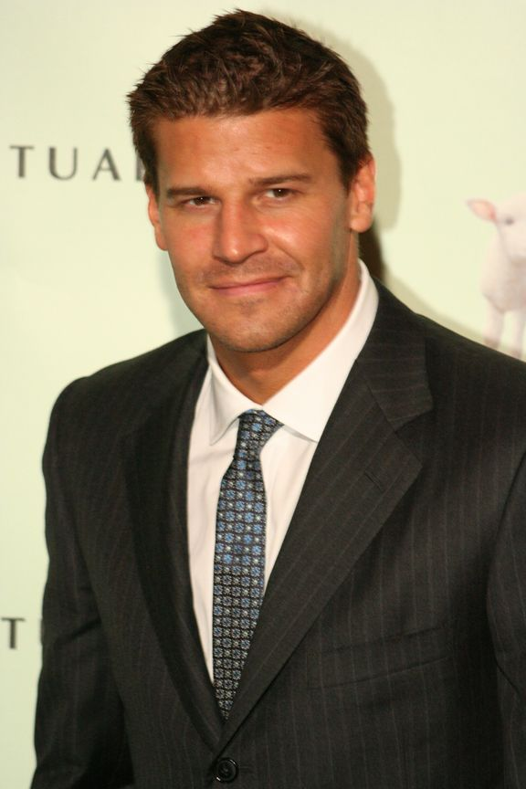 david boreanaz - Google Search