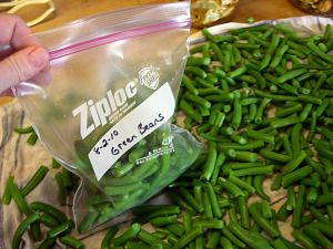 Freezing green beans picked fresh from the garden is a great way to preserve them. Bush beans or pole beans. This page explains freezing green beans of all types