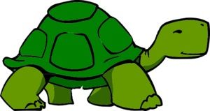 Facts about turtles plus crafts, skip count mazes, word search and word scramble, for school-age children