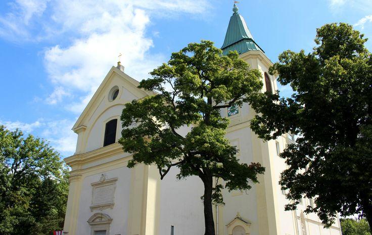 Kahlenberg to wzgórze w Wiedniu, skąd Jan III Sobieski dowodził Odsieczą Wiedeńską - nie może go zabraknąć na trasie turystów z Polski.