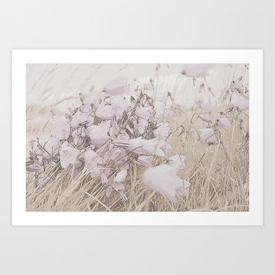 Bluebells in blossom Art Print by Lone  - $18.00