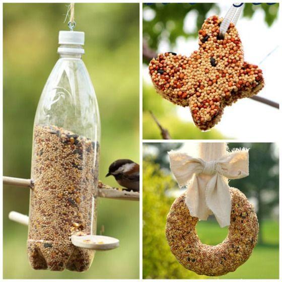 water bottle bird feeder - wreath bird feeder - cookie cutter bird feeder... love the spoon and bottle feeder!!