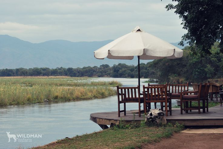 Sausage Tree Camp, Zambia. One of Zambia's finest and most luxurious lodges on the banks of the Lower Zambezi River with superb game viewing and safari activities. #zambia #travel #africansafari #africa
