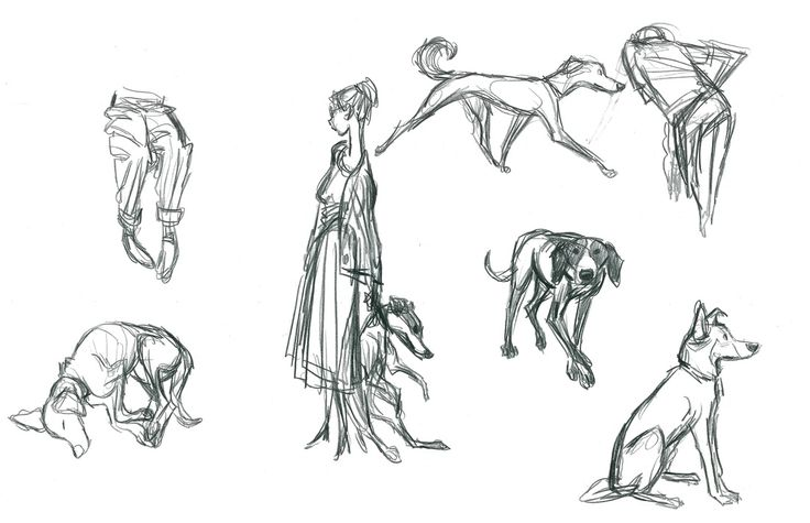 Gesture Drawing - Animation Collaborative