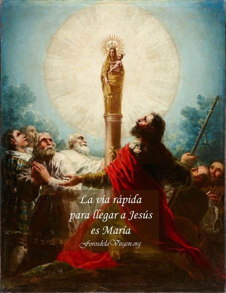 """#REFLEXIONES """"La vía rápida para llegar a Jesús es María""""    María en los últimos tiempos de la Iglesia  http://forosdelavirgen.org/3754/maria-en-los-ultimos-tiempos-de-la-iglesia/"""