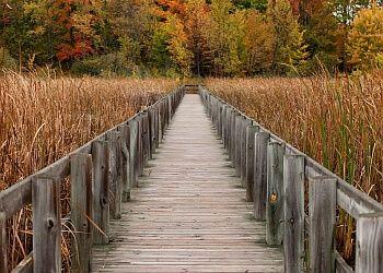 3 best hiking trails in Ottawa
