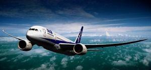 安定飛行するボーイング 787 ドリームライナー|飛行機の写真日記