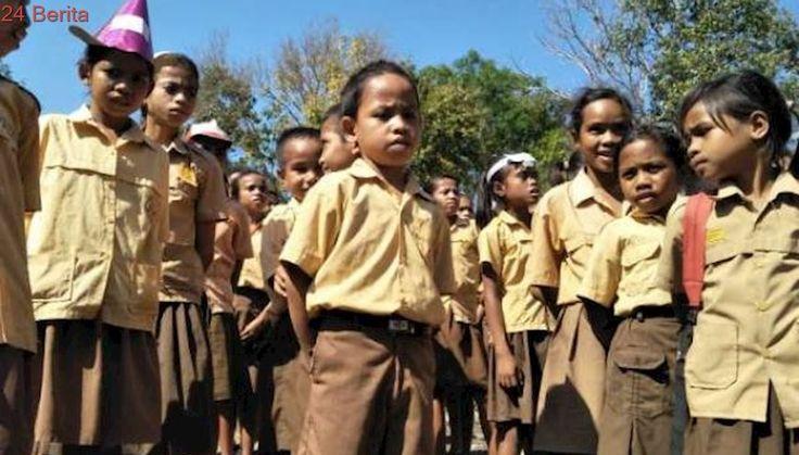 Cerita Sekolah Bilik Bambu Anak-anak Pedalaman Sumba