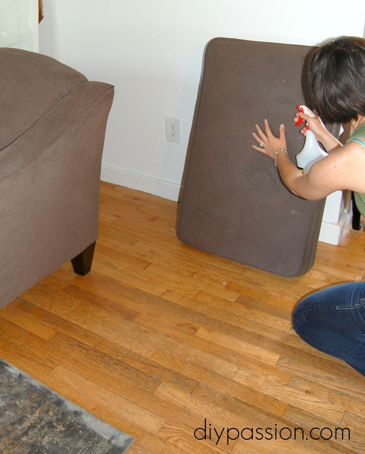 How To Get Dog Smells Out Of The Couch Who Knew Pinterest The O 39 Jays Dogs And Couch