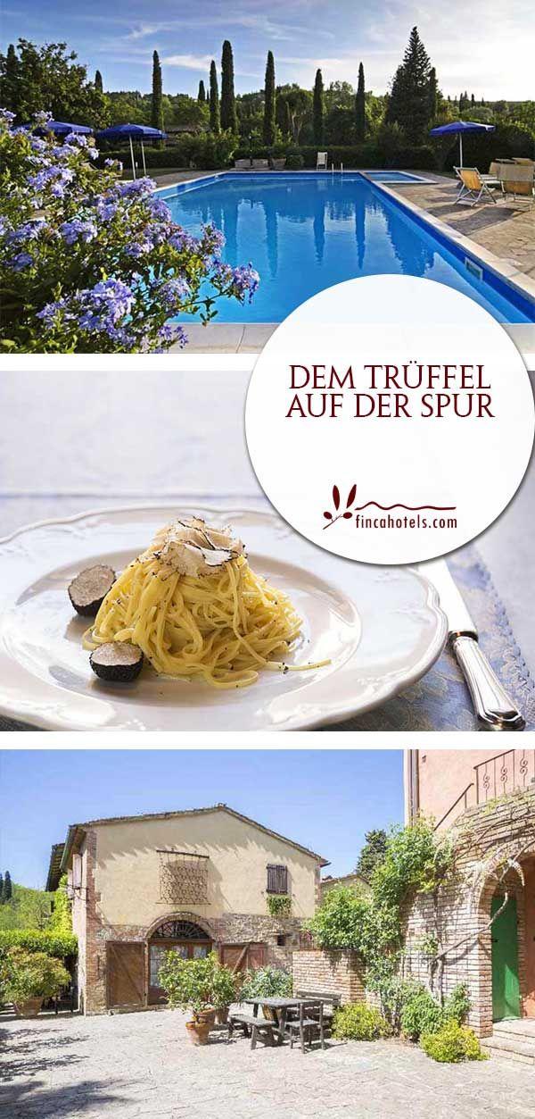 Schaut euch das Hotel Borgo San Benedetto genauer an, wenn ihr euch nach dem authentischen Italien mit seiner herzlichen Gastfreundschaft und guten Küche sehnt. Das familienfreundliche Hotel in der Toskana ist umgeben von weitläufigen Ländereien. Es verfügt über äußerst gemütlich eingerichtete Zimmer und Appartements, eine schöne Gartenanlage mit zwei Außenpools und ein über die Grenzen von Montaione hinaus bekanntes Restaurant.
