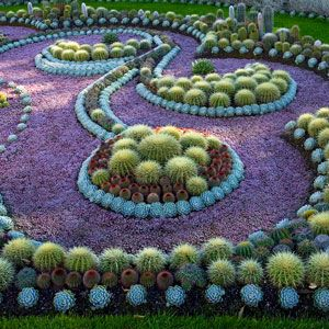 17 Best 1000 images about Cactus Gardens on Pinterest Gardens