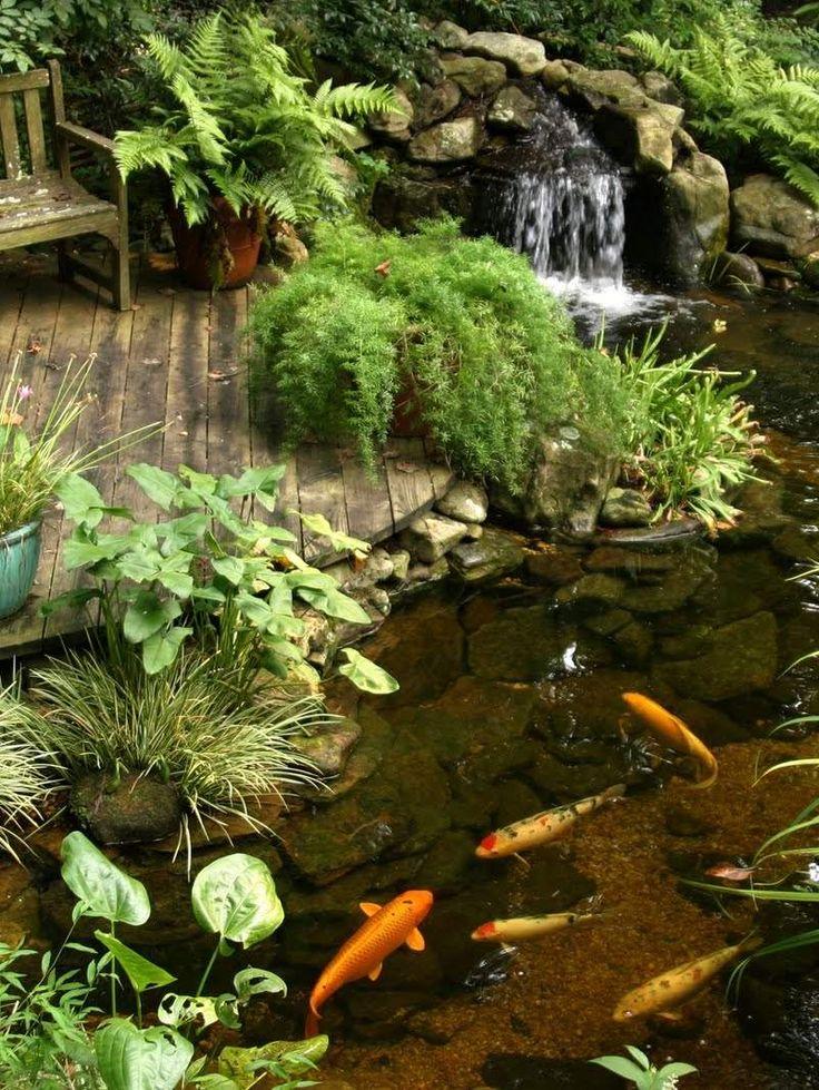 pinspiration 90 stylish backyard garden waterfalls backyard pondsbackyard ideassmall - Koi Pond Design Ideas
