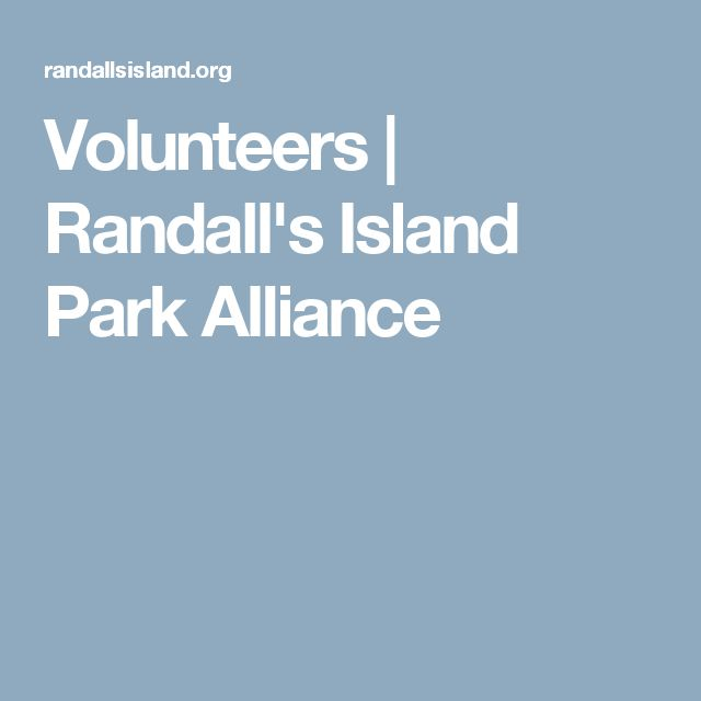 Volunteers   Randall's Island Park Alliance