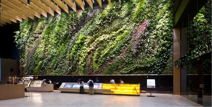 Charming Keeping Cool Staying Green Wall Building Indoors Indoor Green Walls  Exterior, Interior And | Environmental Design | Pinterest | Environmental  Design, ...