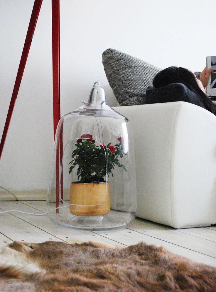 Лампы досвечивания для растений