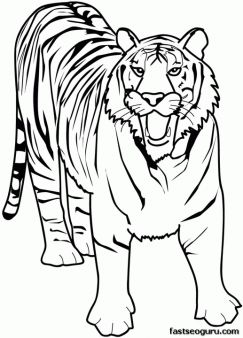 printable animal tiger of africa coloring pages printable coloring pages for kids - Printable Animals Coloring Pages