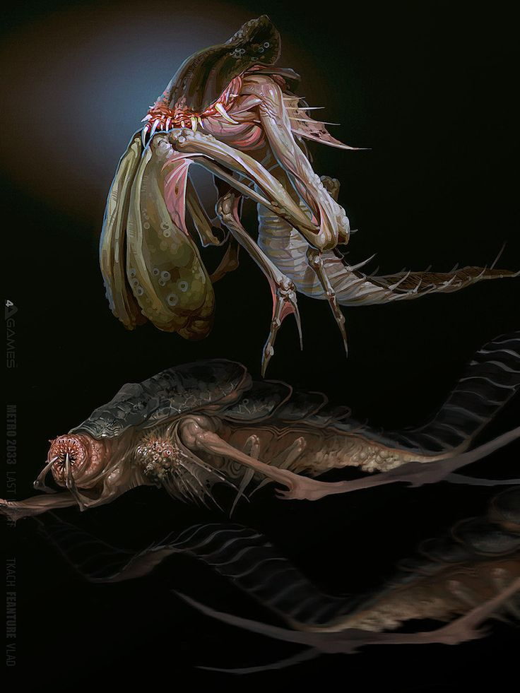 картинки креветок монстров переделки чердака