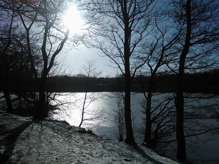 Rowley Lake 2011