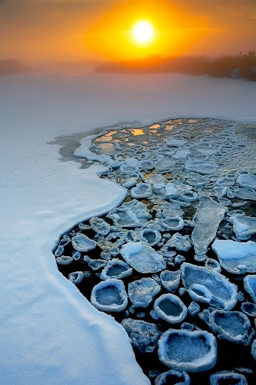 Pancake Ice ~ ice crystals that form in very cold water that is moving to fast to let the ice form into a sheet, Antarctica.